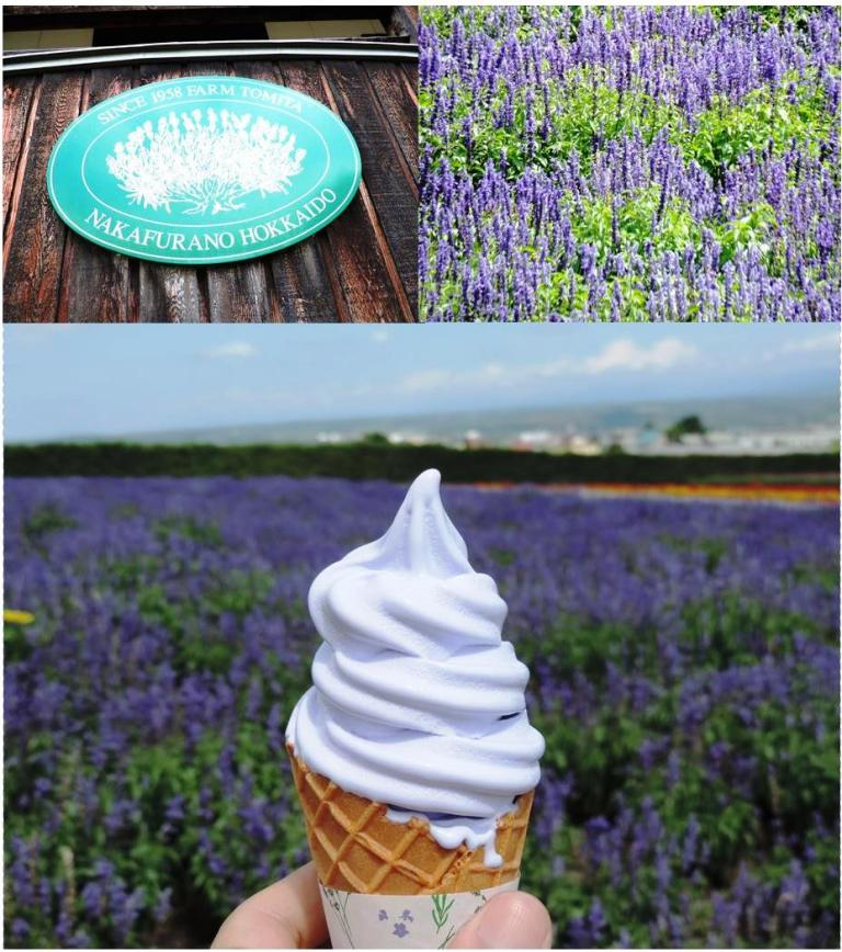 Farm Tomita's lavender field and lavender-flavored ice cream (Photo courtesy of Ng Cin Yin).